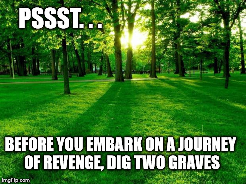 Greener grass | PSSST. . . BEFORE YOU EMBARK ON A JOURNEY OF REVENGE, DIG TWO GRAVES | image tagged in greener grass | made w/ Imgflip meme maker