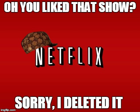 scumbag netflix | OH YOU LIKED THAT SHOW? SORRY, I DELETED IT | image tagged in scumbag netflix,scumbag | made w/ Imgflip meme maker