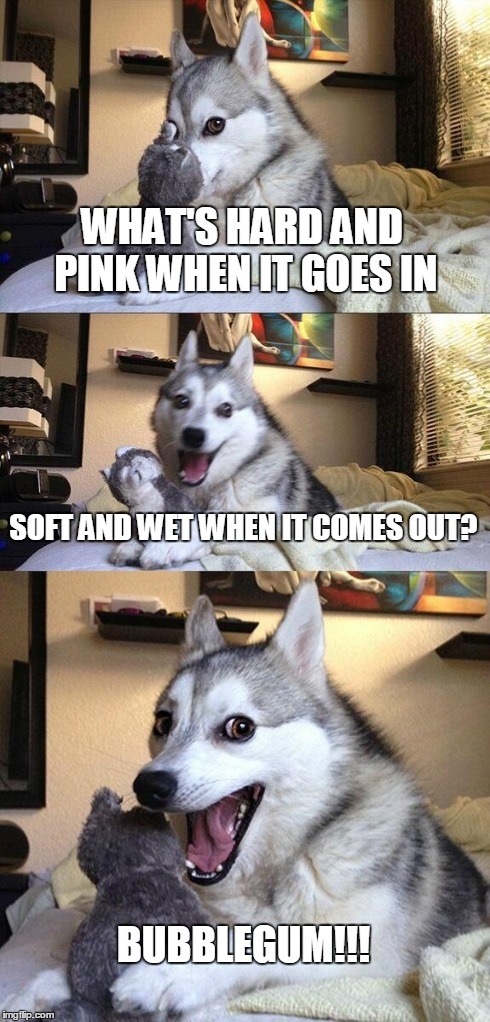 Bad Pun Dog Meme | WHAT'S HARD AND PINK WHEN IT GOES IN SOFT AND WET WHEN IT COMES OUT? BUBBLEGUM!!! | image tagged in memes,bad pun dog | made w/ Imgflip meme maker