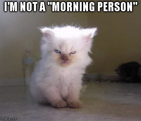 "Not a morning person | I'M NOT A ""MORNING PERSON"" 