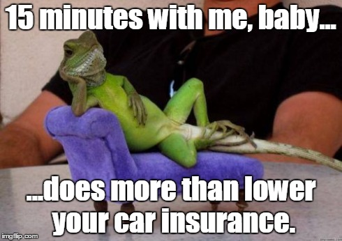 Sassy Iguana | 15 minutes with me, baby... ...does more than lower your car insurance. | image tagged in memes,sassy iguana | made w/ Imgflip meme maker