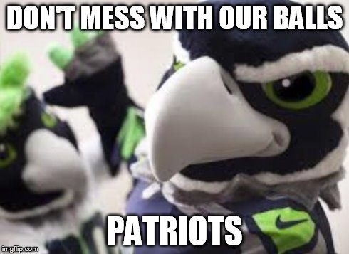 DON'T MESS WITH OUR BALLS PATRIOTS | image tagged in blitz,Seahawks | made w/ Imgflip meme maker