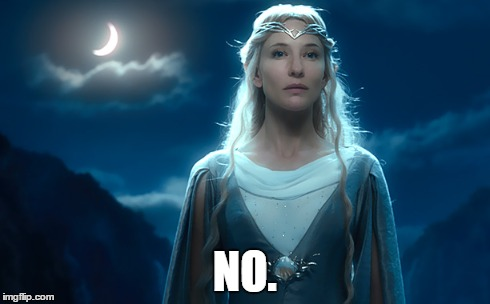 galadriel says no | NO. | image tagged in galadriel,lotr,the hobbit,lord of the rings,cate blanchett,elf | made w/ Imgflip meme maker