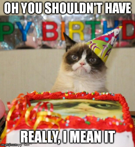 Grumpy Cat Birthday Meme | OH YOU SHOULDN'T HAVE REALLY, I MEAN IT | image tagged in memes,grumpy cat birthday | made w/ Imgflip meme maker