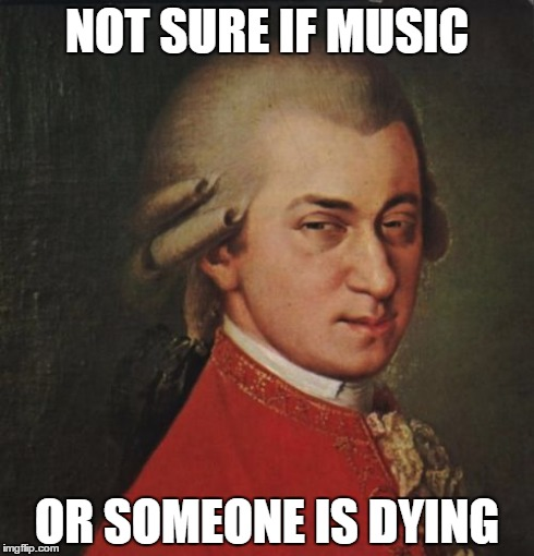 Mozart Not Sure | NOT SURE IF MUSIC OR SOMEONE IS DYING | image tagged in memes,mozart not sure | made w/ Imgflip meme maker