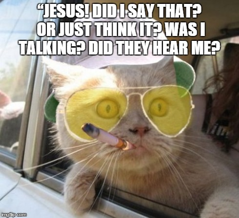 Fear And Loathing Cat Meme - Imgflip