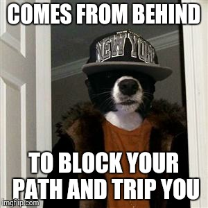 COMES FROM BEHIND TO BLOCK YOUR PATH AND TRIP YOU | image tagged in scumbag dog,AdviceAnimals | made w/ Imgflip meme maker