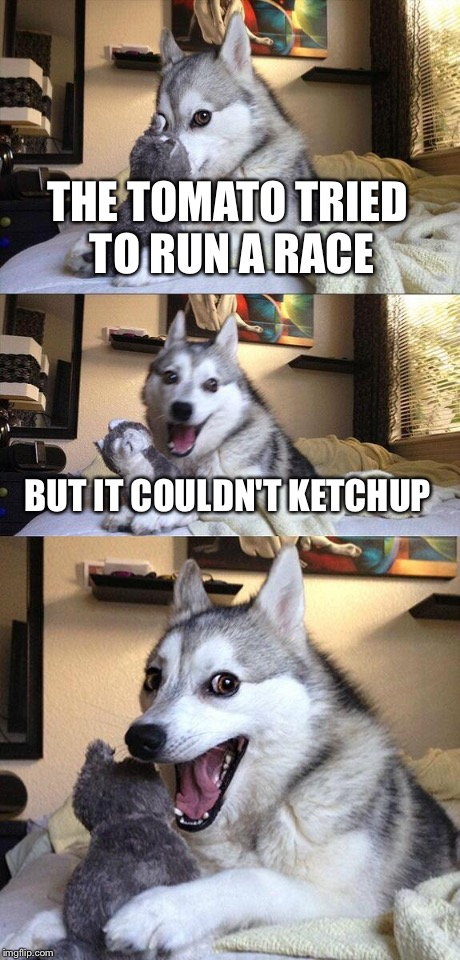 Bad Pun Dog Meme | THE TOMATO TRIED TO RUN A RACE BUT IT COULDN'T KETCHUP | image tagged in memes,bad pun dog | made w/ Imgflip meme maker