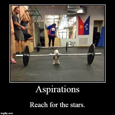 Aspiration Imgflip