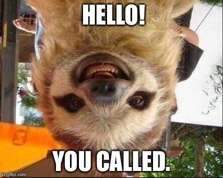 Smile sloth - Imgflip