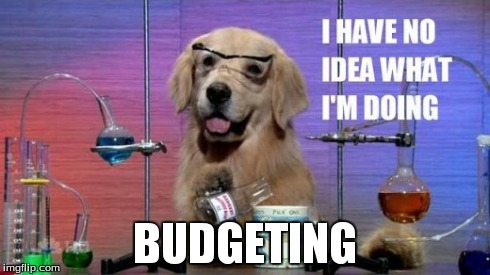 No Idea Dog: I have no idea what I'm doing. Budgeting.