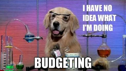 No Idea Dog: I have no idea what I'm doing. Budgeting.