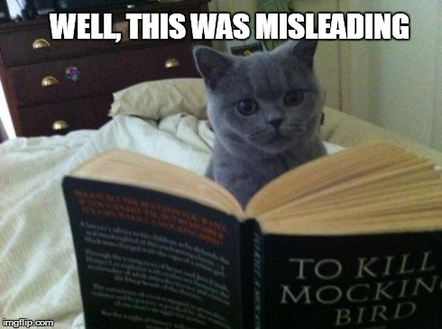 Reading Cat | WELL, THIS WAS MISLEADING | image tagged in reading cat | made w/ Imgflip meme maker