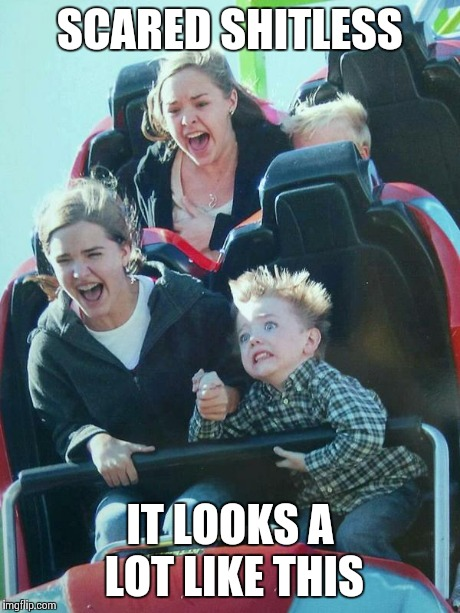 Scared Shitless | SCARED SHITLESS IT LOOKS A LOT LIKE THIS | image tagged in roller coaster,scared | made w/ Imgflip meme maker