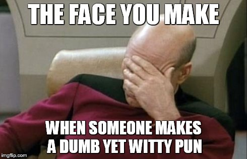 Captain Picard Facepalm Meme | THE FACE YOU MAKE WHEN SOMEONE MAKES A DUMB YET WITTY PUN | image tagged in memes,captain picard facepalm | made w/ Imgflip meme maker
