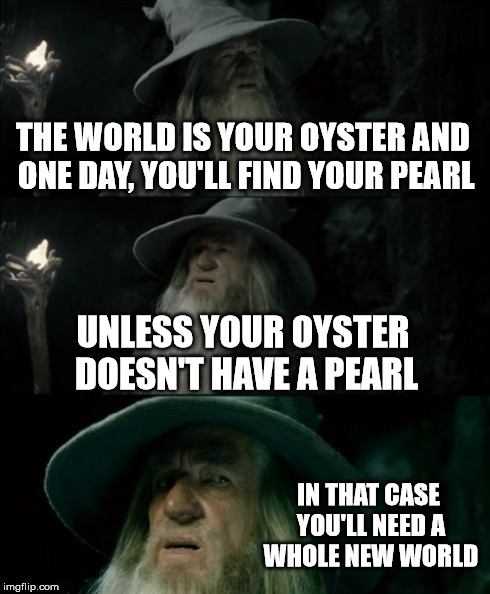 Confused Gandalf Meme | THE WORLD IS YOUR OYSTER AND ONE DAY, YOU'LL FIND YOUR PEARL UNLESS YOUR OYSTER DOESN'T HAVE A PEARL IN THAT CASE YOU'LL NEED A WHOLE NEW WO | image tagged in memes,confused gandalf | made w/ Imgflip meme maker