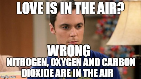 Sheldon Logic | LOVE IS IN THE AIR? WRONG NITROGEN, OXYGEN AND CARBON DIOXIDE ARE IN THE AIR | image tagged in sheldon logic | made w/ Imgflip meme maker