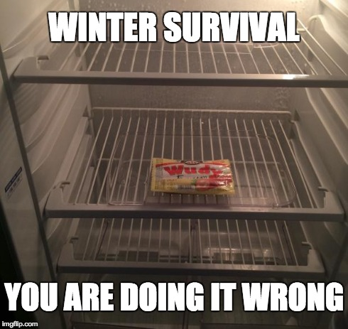Empty fridge | WINTER SURVIVAL YOU ARE DOING IT WRONG | image tagged in empty fridge | made w/ Imgflip meme maker