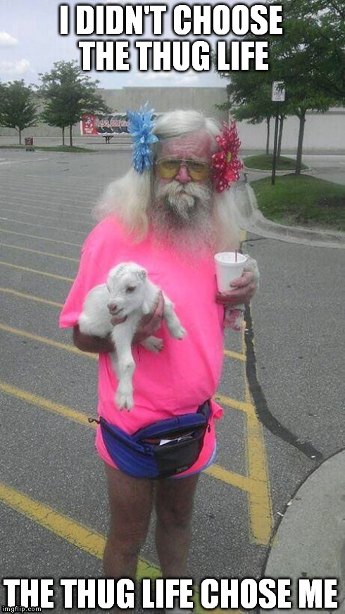 I DIDN'T CHOOSE THE THUG LIFE THE THUG LIFE CHOSE ME | image tagged in thug life,cool old man,goat,pink,cup | made w/ Imgflip meme maker