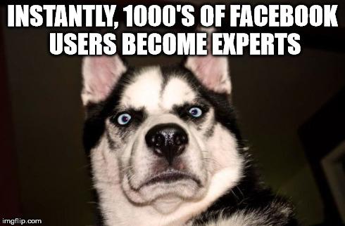Fa Expert