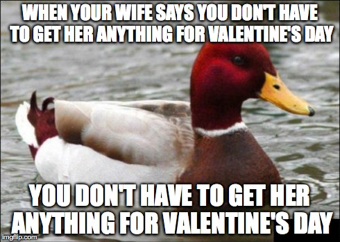 If you do this, YOU'RE DOOMED. | WHEN YOUR WIFE SAYS YOU DON'T HAVE TO GET HER ANYTHING FOR VALENTINE'S DAY YOU DON'T HAVE TO GET HER ANYTHING FOR VALENTINE'S DAY | image tagged in memes,malicious advice mallard | made w/ Imgflip meme maker