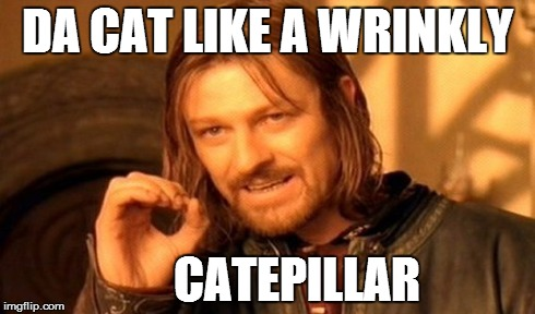 One Does Not Simply Meme | DA CAT LIKE A WRINKLY CATEPILLAR | image tagged in memes,one does not simply | made w/ Imgflip meme maker