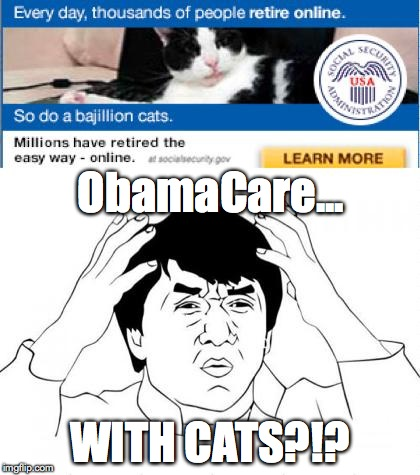 ObamaCare... WITH CATS?!? | image tagged in new obamacare approach | made w/ Imgflip meme maker