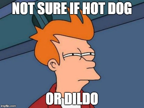 Futurama Fry Meme | NOT SURE IF HOT DOG OR D**DO | image tagged in memes,futurama fry | made w/ Imgflip meme maker