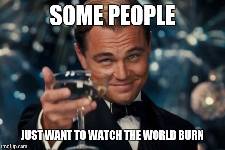 Leonardo Dicaprio Cheers Meme | SOME PEOPLE JUST WANT TO WATCH THE WORLD BURN | image tagged in memes,leonardo dicaprio cheers | made w/ Imgflip meme maker
