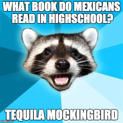 Lame Pun Coon Meme | WHAT BOOK DO MEXICANS READ IN HIGHSCHOOL? TEQUILA MOCKINGBIRD | image tagged in memes,lame pun coon,AdviceAnimals | made w/ Imgflip meme maker