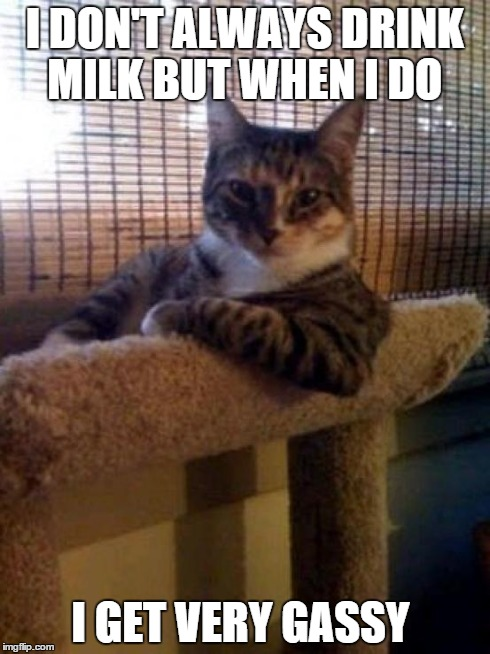 The Most Interesting Cat In The World | I DON'T ALWAYS DRINK MILK BUT WHEN I DO I GET VERY GASSY | image tagged in memes,the most interesting cat in the world,funny cat,farting | made w/ Imgflip meme maker