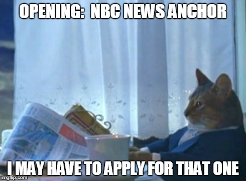 I Should Buy A Boat Cat Meme | OPENING:  NBC NEWS ANCHOR I MAY HAVE TO APPLY FOR THAT ONE | image tagged in memes,i should buy a boat cat | made w/ Imgflip meme maker