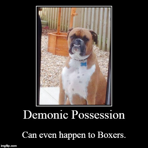 Demonic Boxer | Demonic Possession | Can even happen to Boxers. | image tagged in funny,demotivationals,dog,demon | made w/ Imgflip demotivational maker
