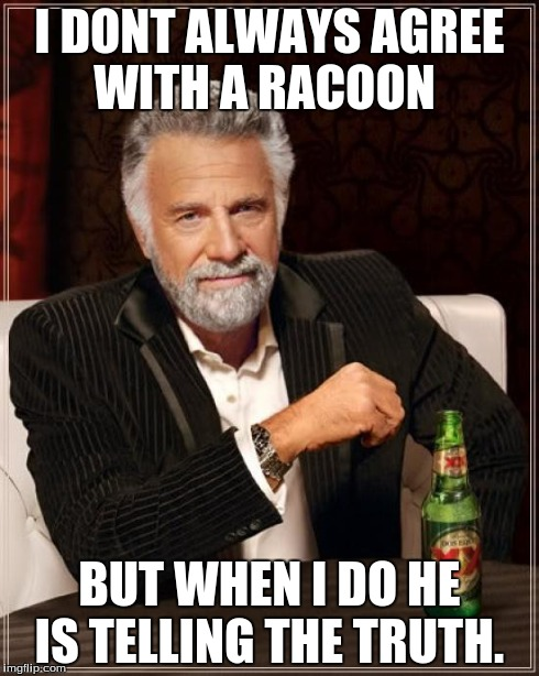 The Most Interesting Man In The World Meme | I DONT ALWAYS AGREE WITH A RACOON BUT WHEN I DO HE IS TELLING THE TRUTH. | image tagged in memes,the most interesting man in the world | made w/ Imgflip meme maker