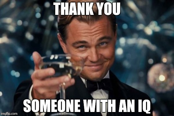 Leonardo Dicaprio Cheers Meme | THANK YOU SOMEONE WITH AN IQ | image tagged in memes,leonardo dicaprio cheers | made w/ Imgflip meme maker