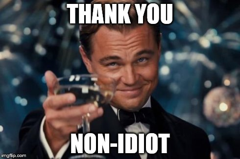 Leonardo Dicaprio Cheers Meme | THANK YOU NON-IDIOT | image tagged in memes,leonardo dicaprio cheers | made w/ Imgflip meme maker