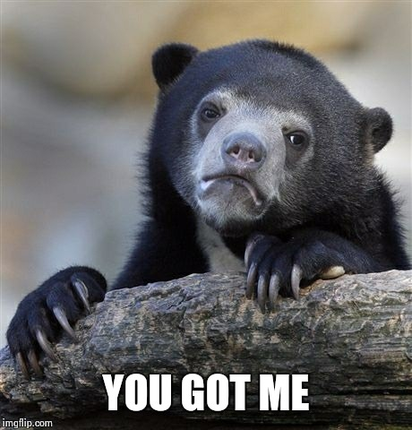 Confession Bear Meme | YOU GOT ME | image tagged in memes,confession bear | made w/ Imgflip meme maker