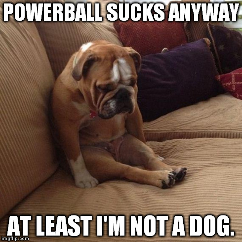 Powerball | POWERBALL SUCKS ANYWAY AT LEAST I'M NOT A DOG. | image tagged in sad dog,powerball | made w/ Imgflip meme maker
