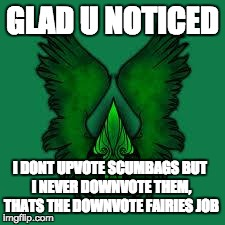 imgflip unite! | GLAD U NOTICED I DONT UPVOTE SCUMBAGS BUT I NEVER DOWNVOTE THEM, THATS THE DOWNVOTE FAIRIES JOB | image tagged in imgflip unite | made w/ Imgflip meme maker