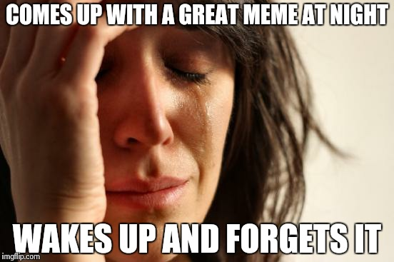 Don't you just hate it when it happens? | COMES UP WITH A GREAT MEME AT NIGHT WAKES UP AND FORGETS IT | image tagged in memes,first world problems | made w/ Imgflip meme maker