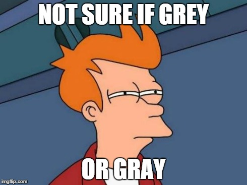 Futurama Fry Meme | NOT SURE IF GREY OR GRAY | image tagged in memes,futurama fry | made w/ Imgflip meme maker