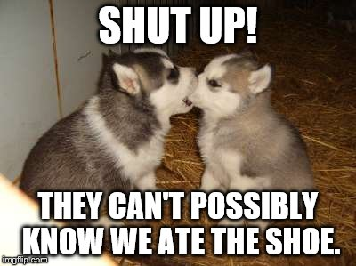 Cute Puppies | SHUT UP! THEY CAN'T POSSIBLY KNOW WE ATE THE SHOE. | image tagged in memes,cute puppies | made w/ Imgflip meme maker