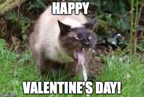 Valentines Day Imgflip