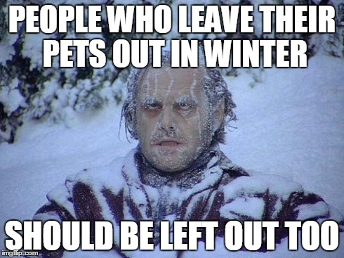 Jack Nicholson The Shining Snow Meme | PEOPLE WHO LEAVE THEIR PETS OUT IN WINTER SHOULD BE LEFT OUT TOO | image tagged in memes,jack nicholson the shining snow | made w/ Imgflip meme maker