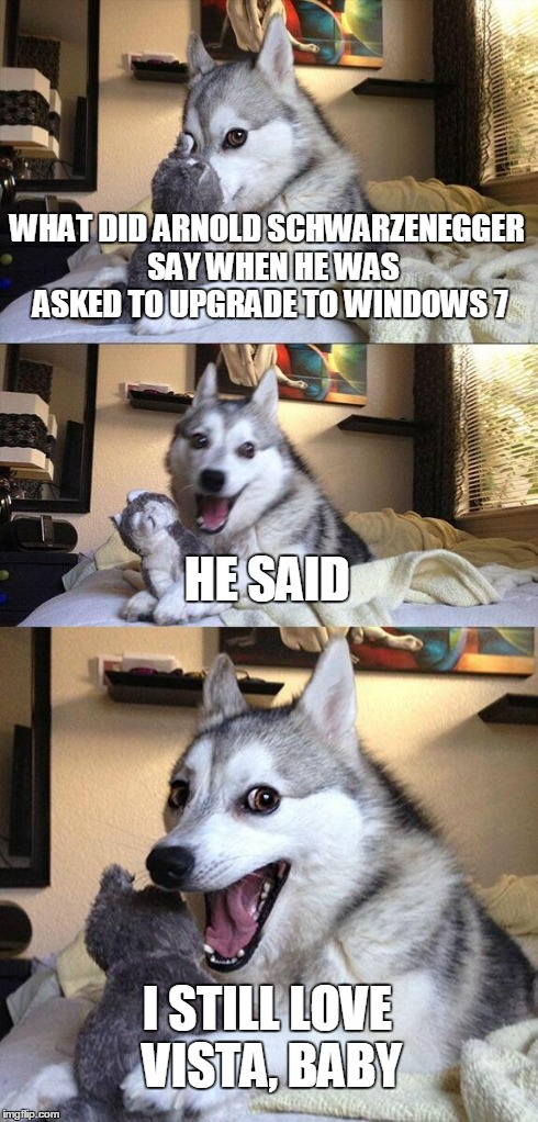 Bad Pun Dog | WHAT DID ARNOLD SCHWARZENEGGER  SAY WHEN HE WAS ASKED TO UPGRADE TO WINDOWS 7 HE SAID I STILL LOVE VISTA, BABY | image tagged in memes,bad pun dog | made w/ Imgflip meme maker