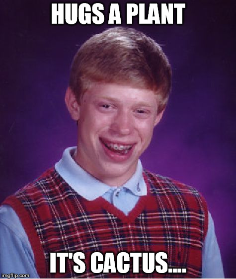 Bad Luck Brian | HUGS A PLANT IT'S CACTUS.... | image tagged in memes,bad luck brian | made w/ Imgflip meme maker