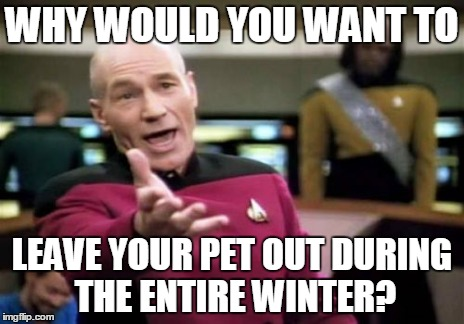 Picard Wtf Meme | WHY WOULD YOU WANT TO LEAVE YOUR PET OUT DURING THE ENTIRE WINTER? | image tagged in memes,picard wtf | made w/ Imgflip meme maker