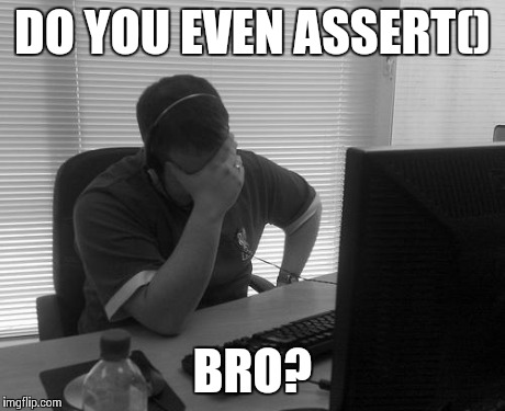 F'ing 'silent failures'! | DO YOU EVEN ASSERT() BRO? | image tagged in programmer facepalm | made w/ Imgflip meme maker