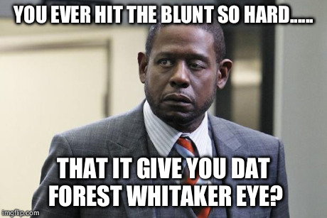 Forest Whitaker | YOU EVER HIT THE BLUNT SO HARD...... THAT IT GIVE YOU DAT FOREST WHITAKER EYE? | image tagged in forest whitaker | made w/ Imgflip meme maker