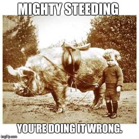 MIGHTY STEEDING YOU'RE DOING IT WRONG. | image tagged in guide to win | made w/ Imgflip meme maker
